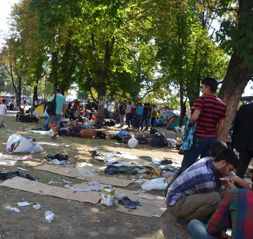 Lager von Schutzsuchenden in Belgrad